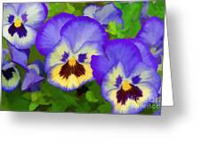 Painterly Pansies Greeting Card
