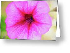 Painted Petunia 344 Greeting Card