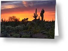 Painted Skies Of The Sonoran Desert Greeting Card