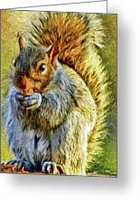Painted Squirrel  Greeting Card