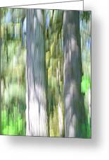 Painted Streaked Trees Greeting Card