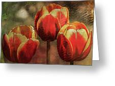Painted Tulips Greeting Card by Richard Ricci