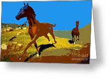 Painted War Horses Greeting Card