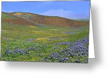 Painted With Wildflowers Greeting Card