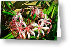 Painterly Effects Greeting Card
