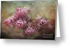Painterly Lilac Blossom Photograph Greeting Card