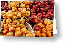 Painterly Peppers Greeting Card