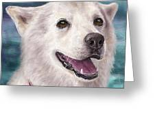 Painting Of A White And Furry Alaskan Malamute Greeting Card