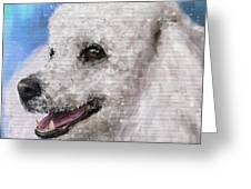 Painting Of A White Fluffy Poodle Smiling Greeting Card