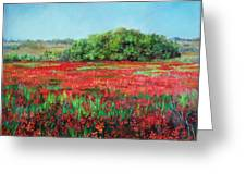 Painting Of Indian Paintbrush In Oklahoma Greeting Card