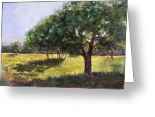 Painting Of Sunlit Meadow Greeting Card
