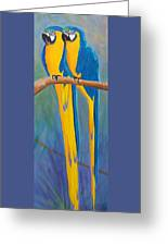 Pair Of Blue And Gold Macaws Greeting Card