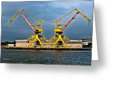 Pair Of Cranes Greeting Card