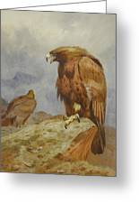 Pair Of Golden Eagles By Thorburn Greeting Card