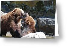 Pair Of Grizzly Bears Biting At Each Other Greeting Card