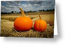 Pair Of Perfect Pumpkins Greeting Card
