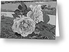 Pair Of Roses In Grayscale Greeting Card