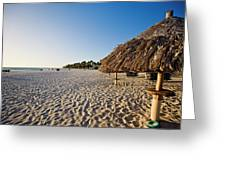 Palapas Of  Aruba Greeting Card