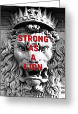 Palazzo Pitti Firenze Lion Greeting Card