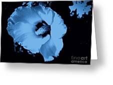 Pale Blue Tinge Hibiscus Flower Greeting Card