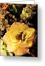 Pale Rose Greeting Card
