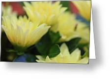 Pale Soft And Yellow Flower Abstract At Sunset Greeting Card
