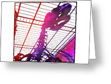 Paleo Rex Greeting Card
