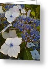 Paler Shades Of Blue Greeting Card