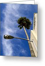 Palm And Streetlight Greeting Card