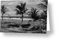 Palm Beach Road Trip Greeting Card