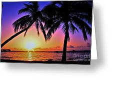 Palm Bliss Greeting Card