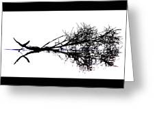Palm Branch At The Beach Greeting Card