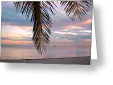 Palm Courtain II Greeting Card