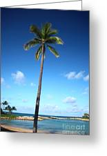 Palm Day Greeting Card