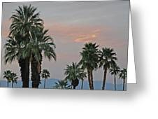 Palm Desert Sunset  Greeting Card