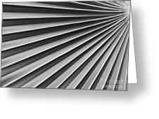 Palm Fan Pattern Greeting Card