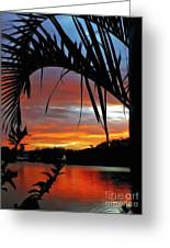 Palm Framed Sunset Greeting Card