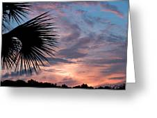 Palm Frond At Dusk Greeting Card