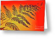 Palm Frond In The Summer Heat Greeting Card
