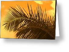 Palm Frond Sunset Greeting Card