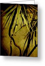 Palm Fronds Are Green Greeting Card