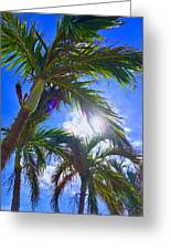 Palm Gazing Greeting Card