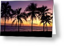 Palm Horizons Greeting Card