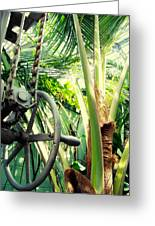 Palm House Pulley Greeting Card