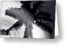 Palm In Grey Greeting Card
