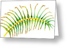 Palm Leaf Watercolor Greeting Card
