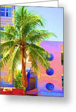 Palm Of Miami Greeting Card