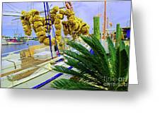 Palm Of The Dock Greeting Card