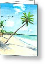 Palm Over Diani Beach Greeting Card