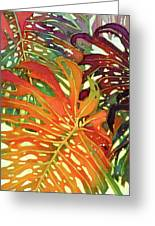 Palm Patterns 2 Greeting Card